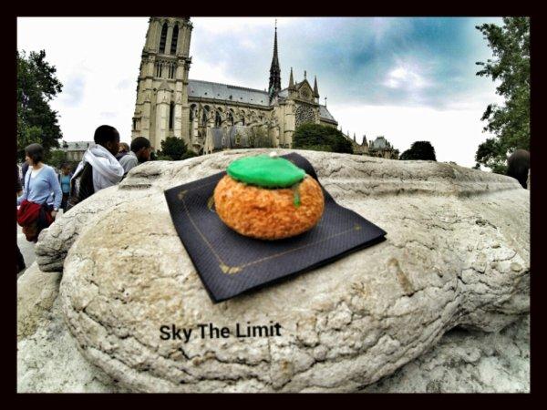 Sky The Limit dit : Odette, bar à choux 77 rue de la galande 75005 Paris, métro st michel