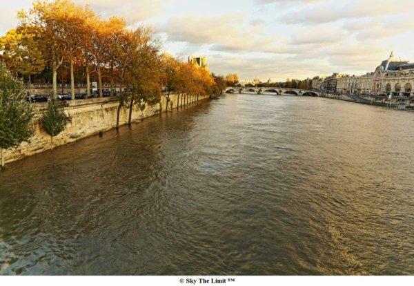 La Seine en cru