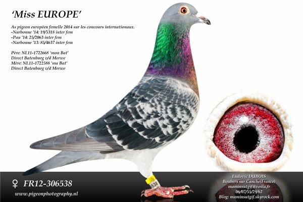 "1ére photo: ""Miss EUROPE"""