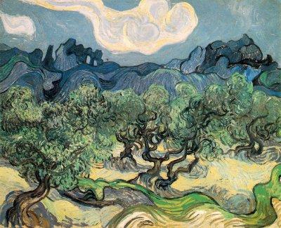 Van Gogh Les Oliviers