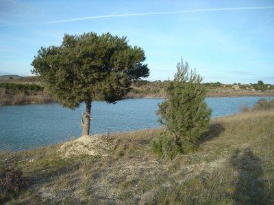 les 3 lacs / Frontignan