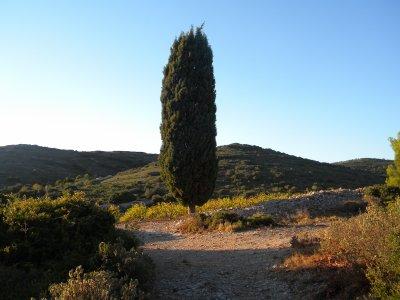 Paysage / Frontignan