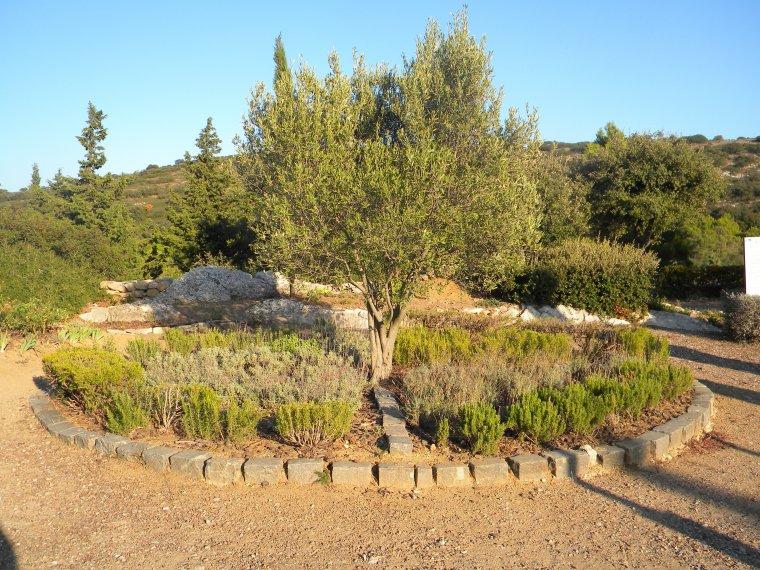 Le jardin secret les secrets de la gardiole for Le jardin secret chicha