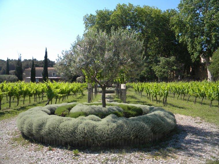Les jardins de Valmagne