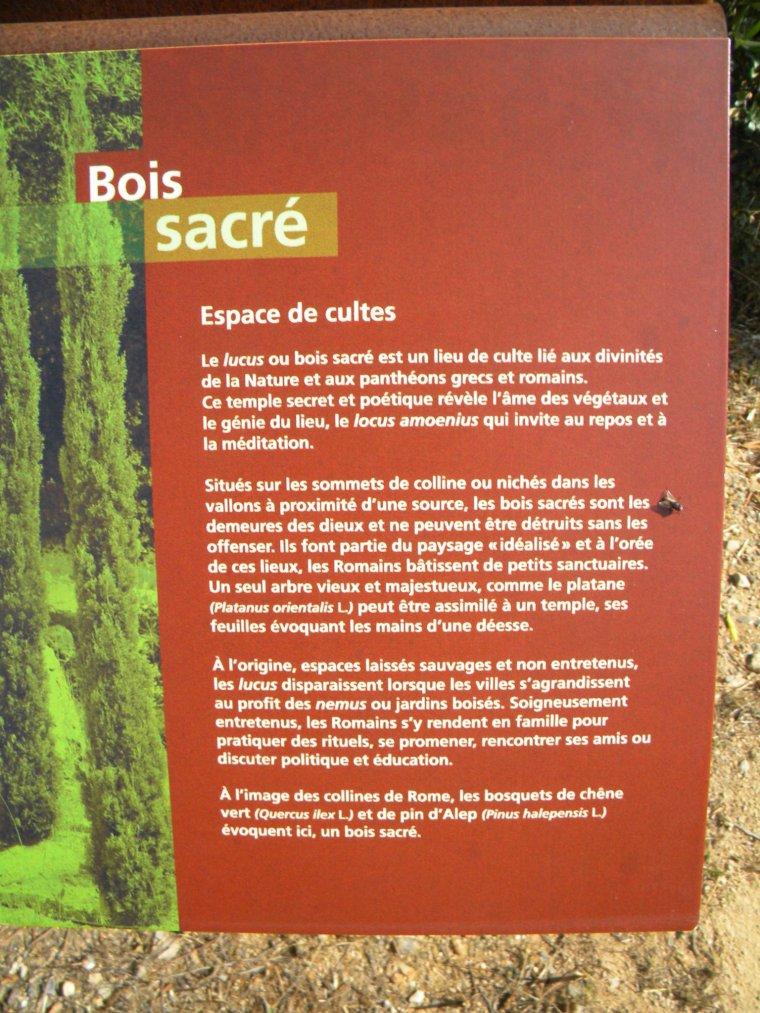 Entre Pierres et Bois Sacré