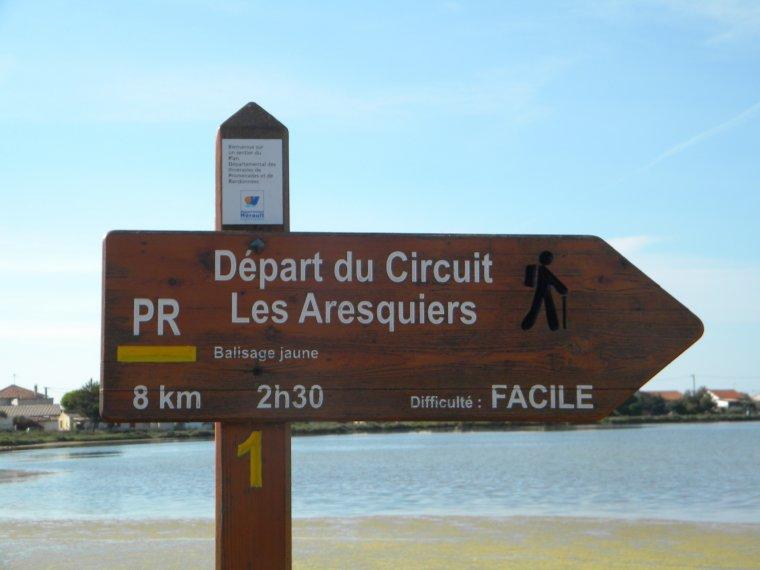 Entre Pierres et Berceau du Muscat