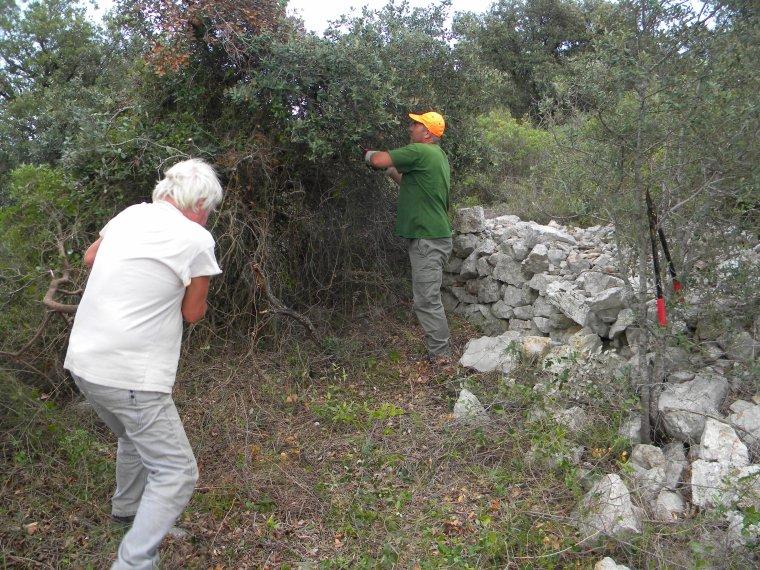 Reprise des activités / restauration des Capitelles