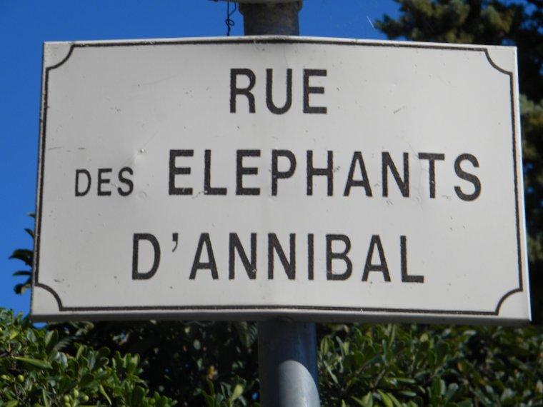 Entres Pierres et  Éléphants