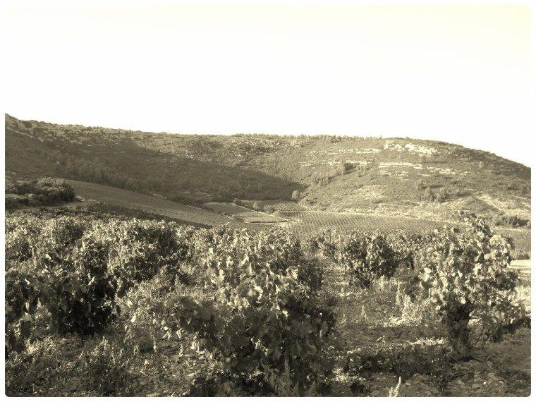 """Les Rabassous """"Terre de Légendes"""""""
