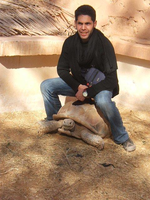 toujour au sahara