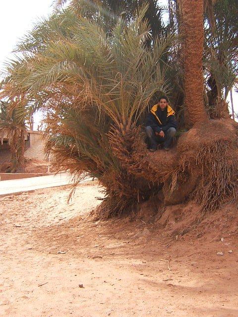 dj fahmi en voyage toujour