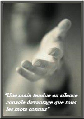 Quelques belles phrases...♥♥♥