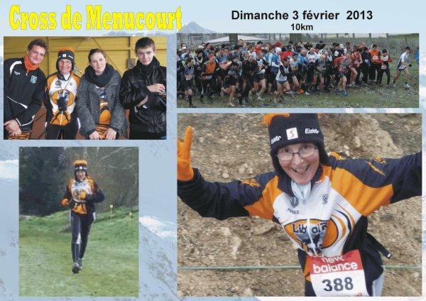 Cross de Menucourt - Dimanche 3 février 2013