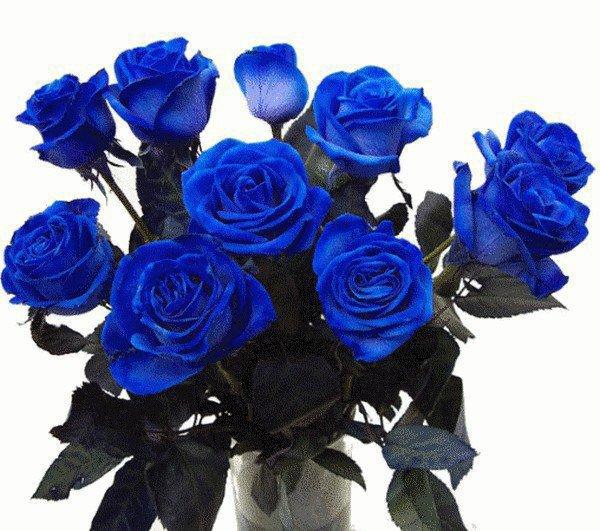 bouquet de fleurs bouquet d'amour