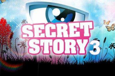 Secret Story 3 : Qui est votre préféré ?