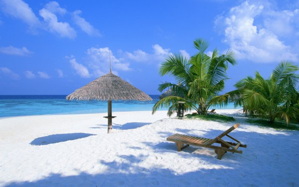Lakshadweep Tourism Offers Perfect Holidaying Spots