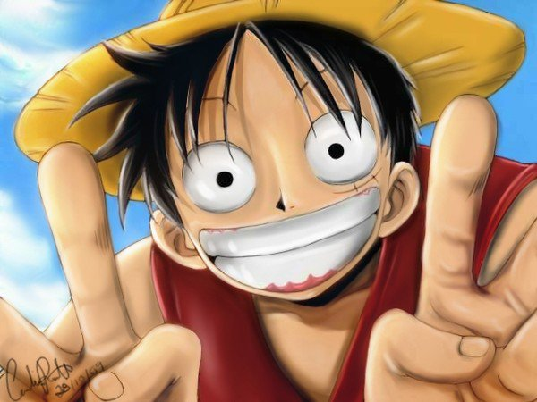Luffy mon capitaine
