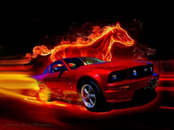 PASSION MUSTANG