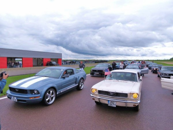 SORTIE STANGY AU MUSTANG NAT'S 2013