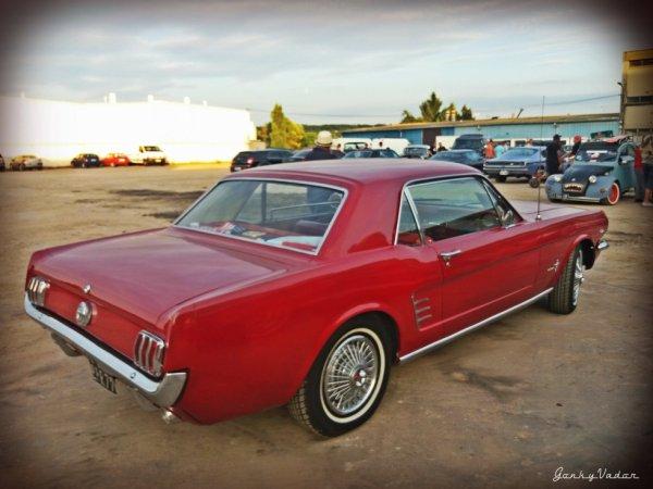 Mustang à Trilport