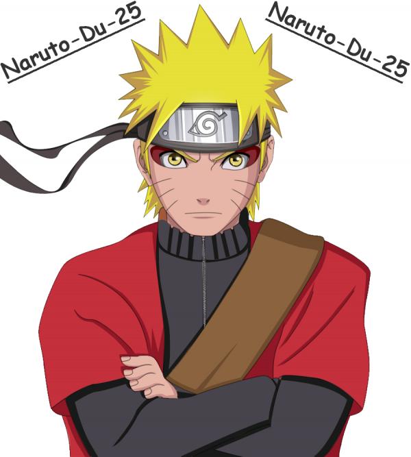 L'Histoire De Naruto Shippuden.