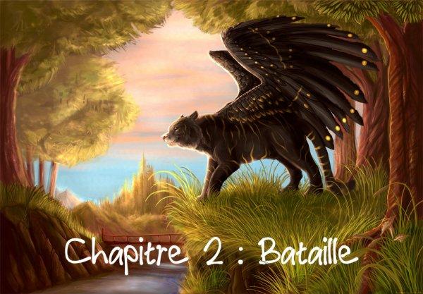 Chapitre 2 : Bataille