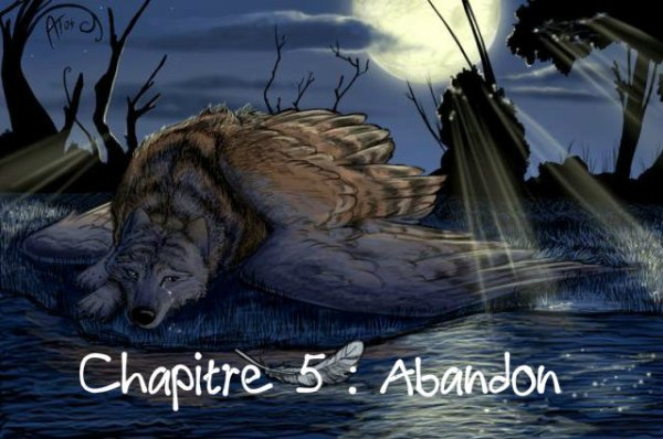 Chapitre 5 : Abandon