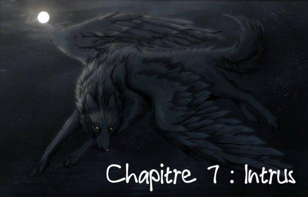 Chapitre 7 : Intrus