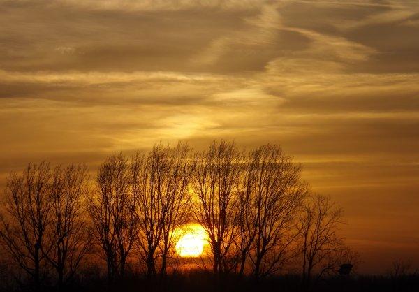 Chaque levés du soleil sont différents et nous offrent un spectacle incroyable et tellement splendide.