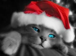 je vous souhaite un bon réveillon de Noël, bisous prenez soin de vous et á bientôt. Sysy