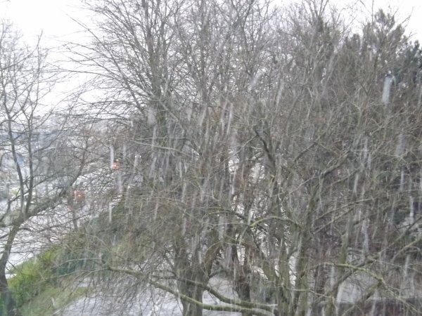 Tombe la neige :)