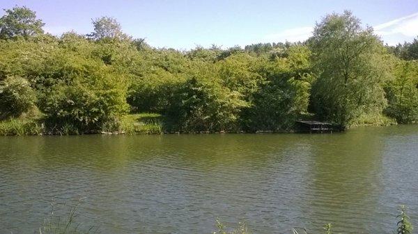 Le Bois Des Forts Dunkerque