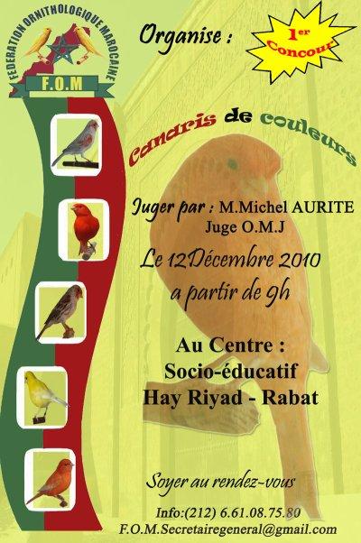 1er concours canaris de couleurs au MAROC / Les détails