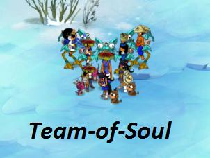 Salut à tous ! et Bienvenu sur le  blog de la Team Soul qui joue sur Kuri!!