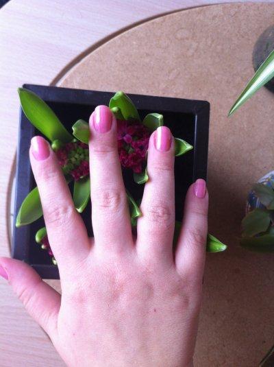 fond rose avec dentelle et bille