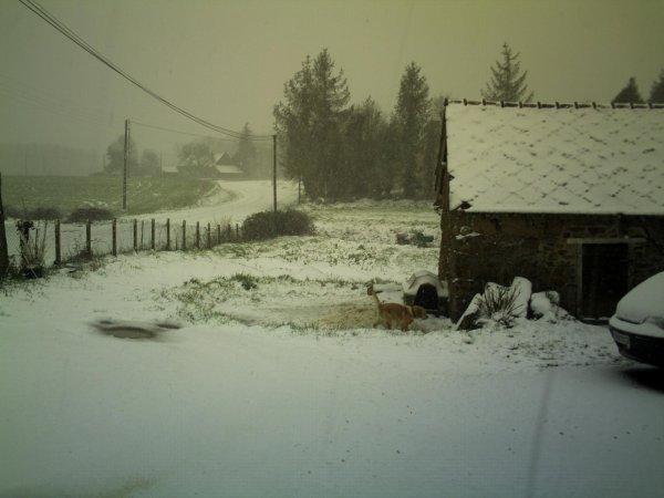 Fin de l'épisode neigeux, à ce jour c'est la pluie, pas mieux !!!!