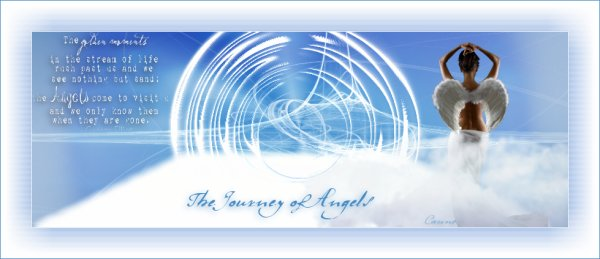 The Journey of Angels