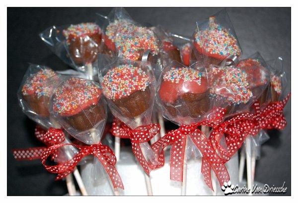 Cake  Pops pour ma petite princesse :)