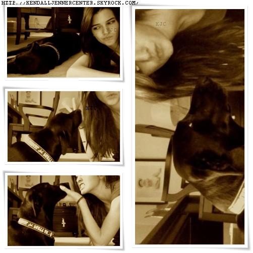 PHOTOS PERSONELLES :  Des photos de Kendall avec son chien viennent d'apparaitrent.   Comment trouves-tu les photos ? Et Kendall ?