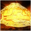Ufc-Ultimate-fighting