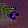 Wall-Euh