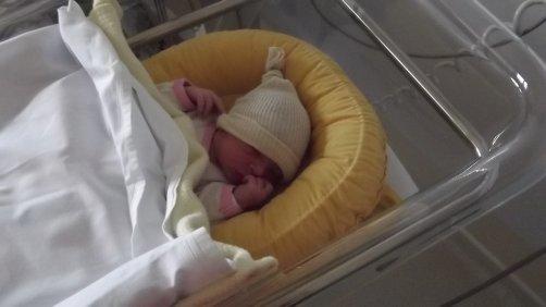 marion né le 10/04/2011 poi 2.375g 31cm