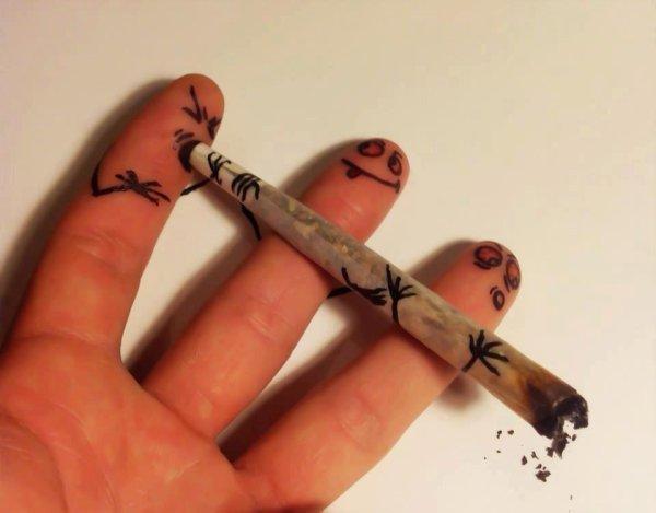 SMOKE.WEED.EVERYDAY.
