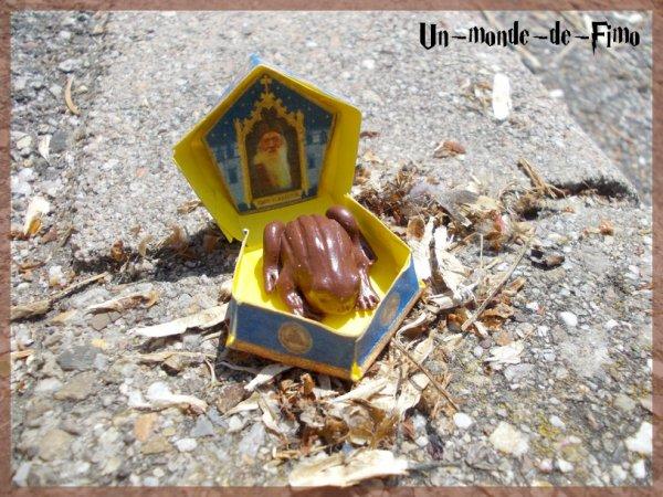 Cinq-cent-quarante-et-unième objet:   Chocogrenouille