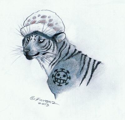 Animal. Meow.
