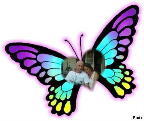 nous somme comme des papillon nous volons de bonheur