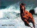 Photo de game-horse