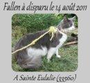 Photo de Fallen-Ma-Perle