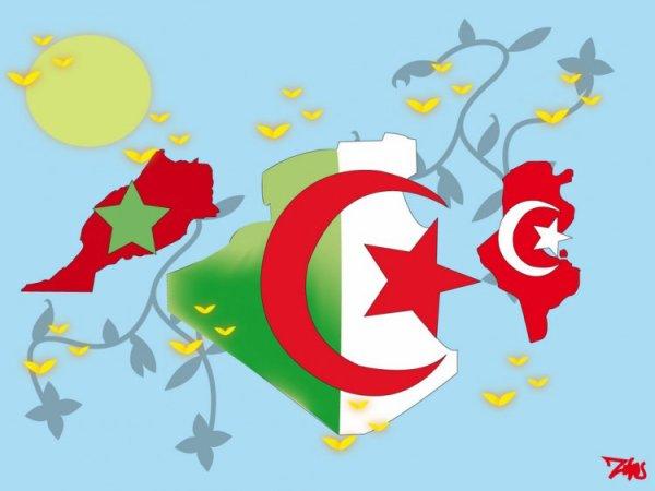 Meetic 100% algérien marocain tunisien