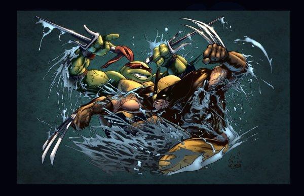 Raphael Vs Wolverine